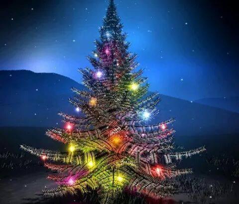 natale albero con luci